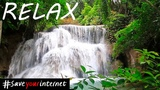 Calm Mind Relaxing Music for Peaceful Mind - Sleep Sound