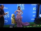 Vanessa Hudgens y Eva Longoria Duelo de Estilos en el estreno de Dog City