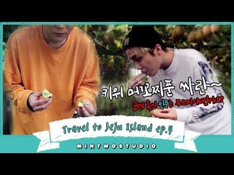 알쓸신잡:골든키위편   Gangnam Style..in Jeju?🐴   Travel to Jeju Island   민뚜 스튜디오 Vlog 4   MINTWOSTUDIO