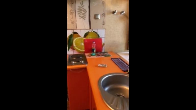 😊Квартира посуточно в Одессе😊 Видео - отзыв от моих гостей из Киева с кошечкой о квартире на улице Екатерининской, 8/10