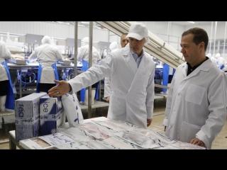 Рыбоперерабатывающая фабрика «Полярное море+»