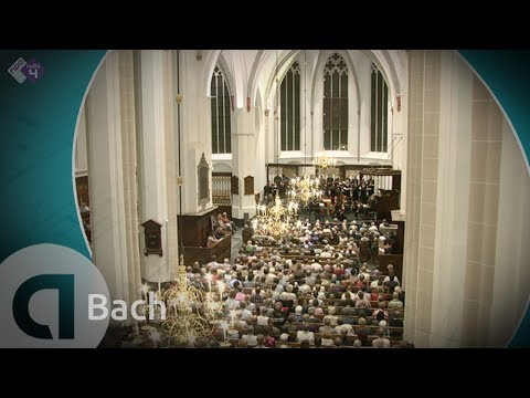 Bach: Hohe Messe - Live Concert HD - Daniel Reuss - Capella Amsterdam - Il Gardellino