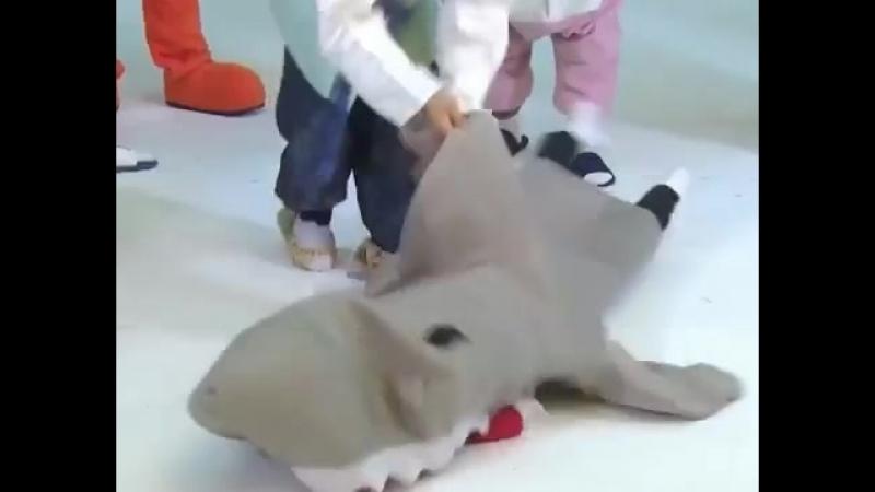Мун Акула