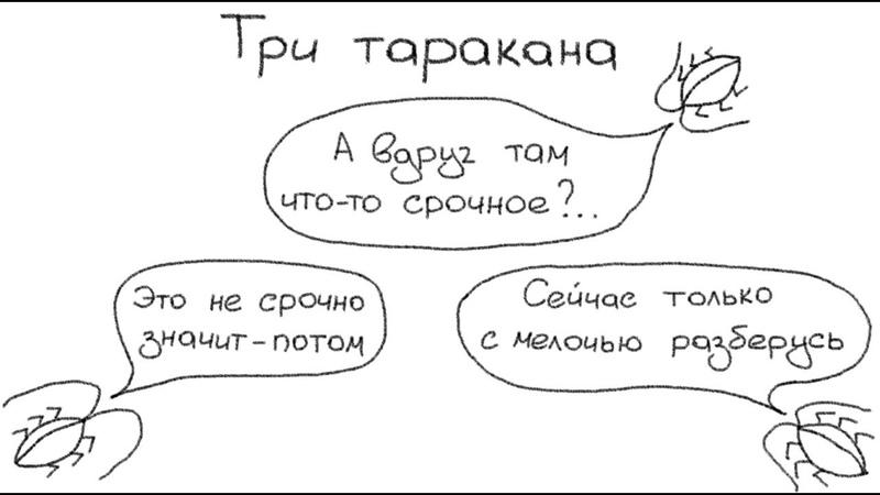 Проклятие трех тараканов Прожекторпрокрастинатологии №7