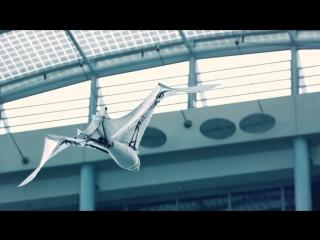 Festo – BionicFlyingFox (English_Deutsch)