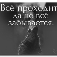 Анкета Daler Abdulloev