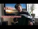 Кони привередливые ♫ Песни под гармонь ♫ Песни Владимира Высоцкого ♥