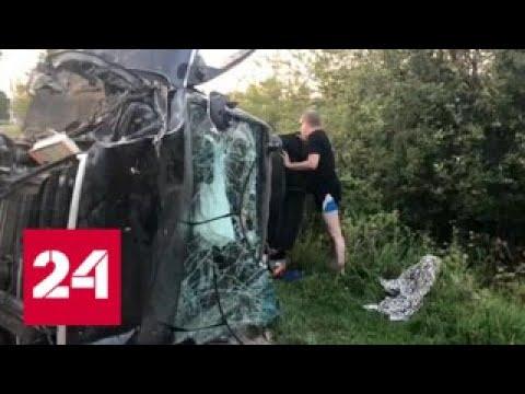 Виновника ДТП в Ленинградской области узнали по форме - Россия 24
