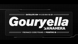 Ferry Corsten presents Gouryella - Anahera Official Music Video