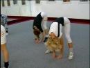 Академия Азробики Калланетика аэробика шейпинг фитнес
