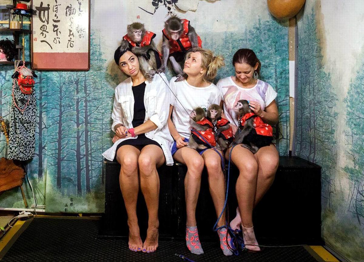 Ну что девчонки, давайте знакомиться: Польские туристки и японские макаки в таверне