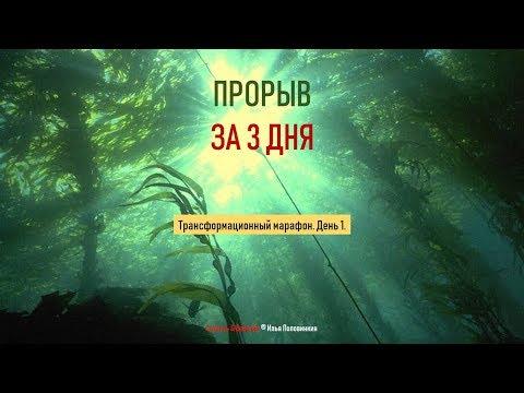 Илья Половинкин Прорыв за 3 дня День 1