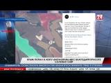 Крым попал в ленту «Instagram» Международной космической станции благодаря красоте солёных озёр