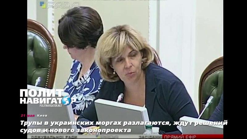 Трупы в украинских моргах разлагаются, ждут решений судов и нового законопроекта