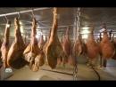 научно популярный проект Еда живая и мертвая 13 10 2018 расскажут о свинине сало