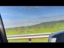 Легковушка протаранила бензобак у фуры при обгоне на трассе в Приморском крае