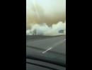 В Новокузнецке поджигают траву горят целые поля