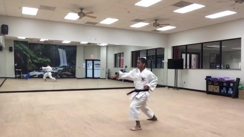 Kihon Sensei Kevin Funakoshi 船越 Basics, Basics and Basics 12 船越 Funakoshi 船越 松濤館空手協会 空手
