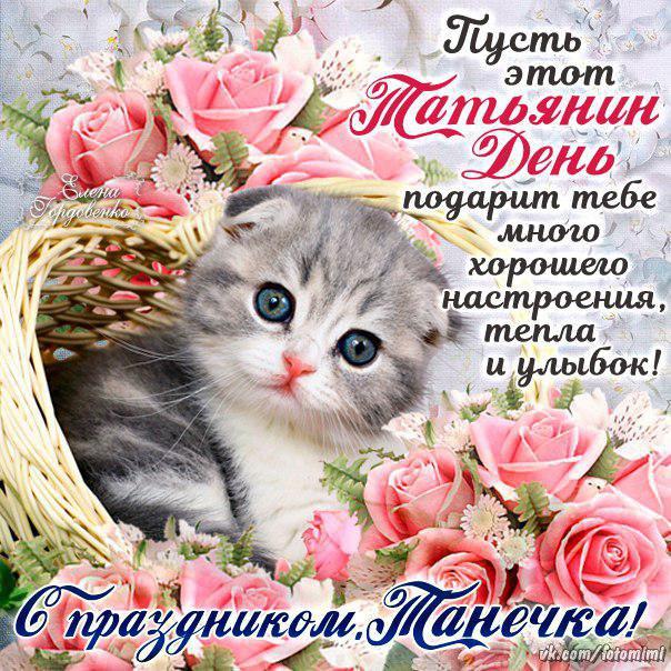 татьянин день, с днем ангела,татьяна! (источник: gofazenda)