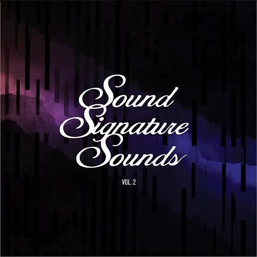 Theo Parrish альбом Sound Signature Sounds, Vol. 2