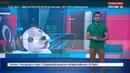 Вести.net. Sony показала на IFA смартфон Xperia XZ3 и робощенков Aibo