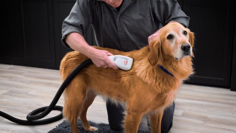 [How to use BarkBath™ BISSELL]