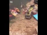 Кормит рыбок