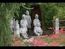 Un bassin de jardin dans un jardin ZEN une passion