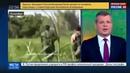 Новости на Россия 24 • Побег из колумбийского плена с перестрелкой: Рэмбо отдыхает