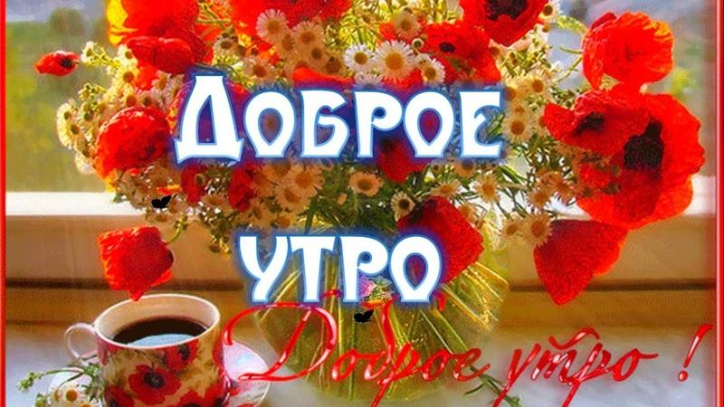 Среда Доброе Утро Прекрасное Утро Среды Видео Открытки с Добрым Утром Среда