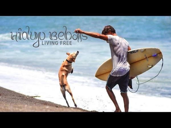 Hidup Bebas - Living Free - Bali 2018