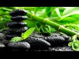 Karunesh Heart Chakra Meditation Beautiful Meditation music Full album tracklist