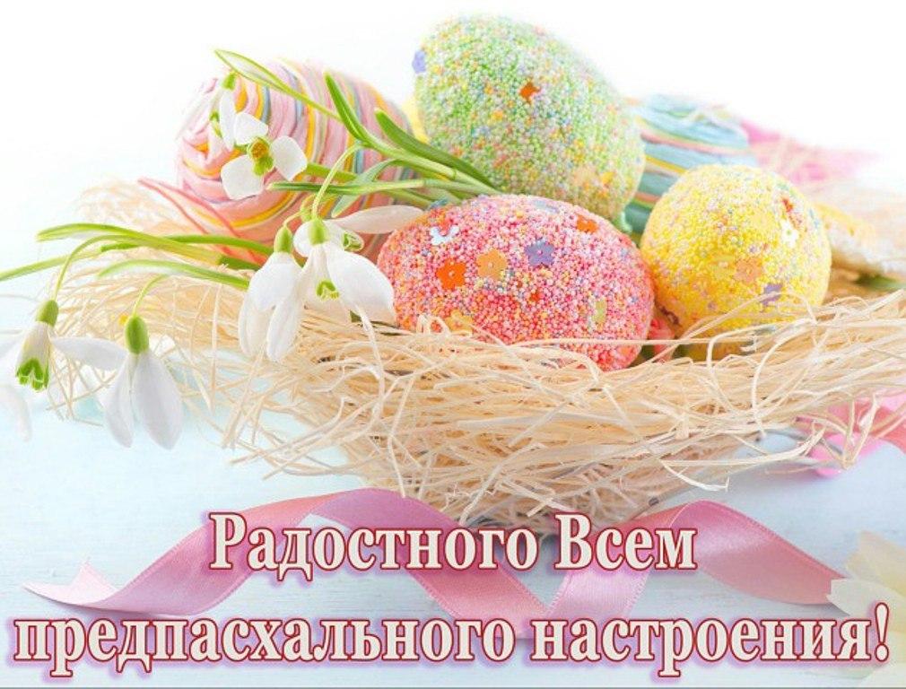 https://pp.userapi.com/c846524/v846524143/1a666/iYQRvQ0jJRM.jpg
