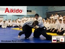 Aikido - Use body softly and throw freely (Kaiten Nage)SHIRAKAWA RYUJI shihan