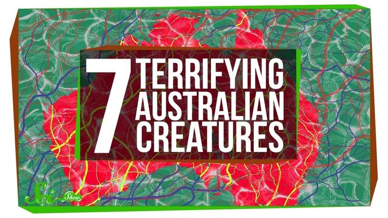 7 of Australias Most Terrifying Inhabitants