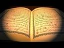 سورة المؤمنين بصوت القارىء الشيخ مشاري بن 1