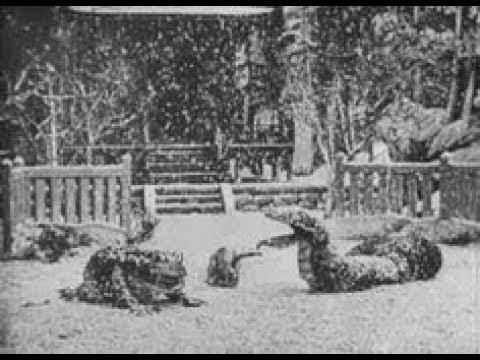 Jiraiya the Hero 1921 silent short film directed by Shōzō Makino