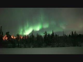 Яркое северное сияние и эмоции в ночь 7/8 января 2019 года