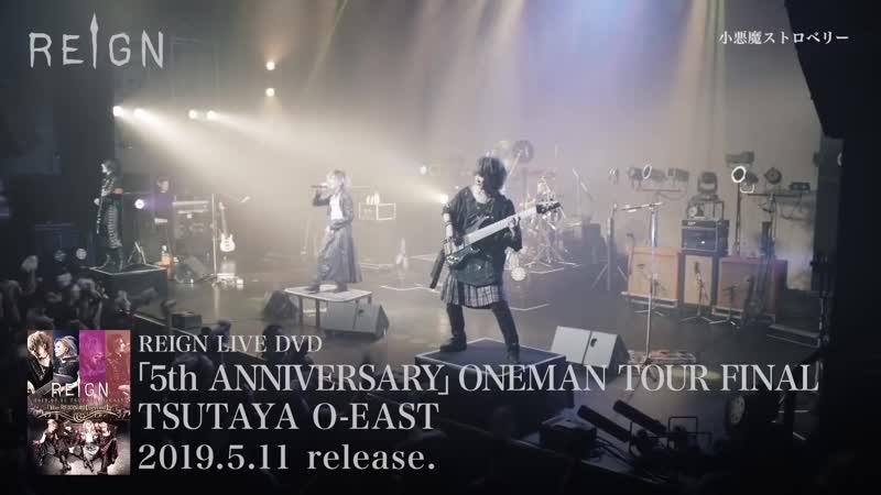 REIGN LIVE DVD「5th ANNIVERSARY ONEMAN TOUR FINAL TSUTAYA O-EAST」SPOT
