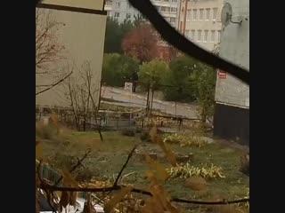 На территории 86 школы в Новом городе появился ананист! Мамочки будьте бдительны!!!