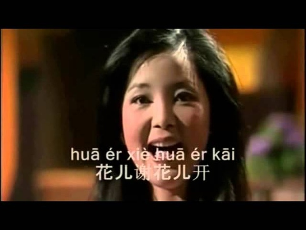 情人的關懷 Qing ren de guan huai 鄧麗君 Teresa Teng, pinyin
