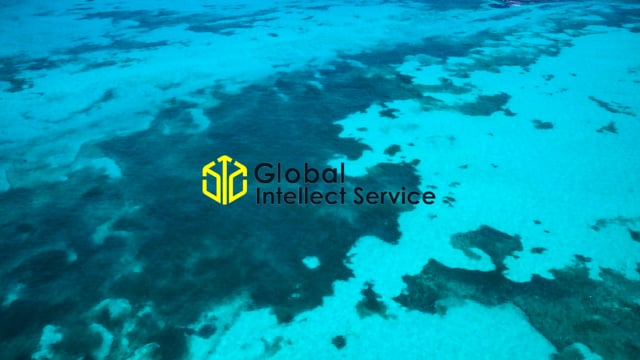 Global Intellect Service | UDS