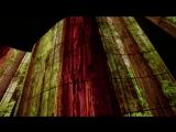LG OLED Canyon IFA 2018.mp4
