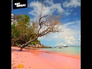 Розовый пляж в Индонезии // Орел и Решка. По морям