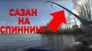 САЗАН НА СПИННИНГ! Тот случай на рыбалке, когда активного судака не достаточно Рыбий жЫр 5 сезон
