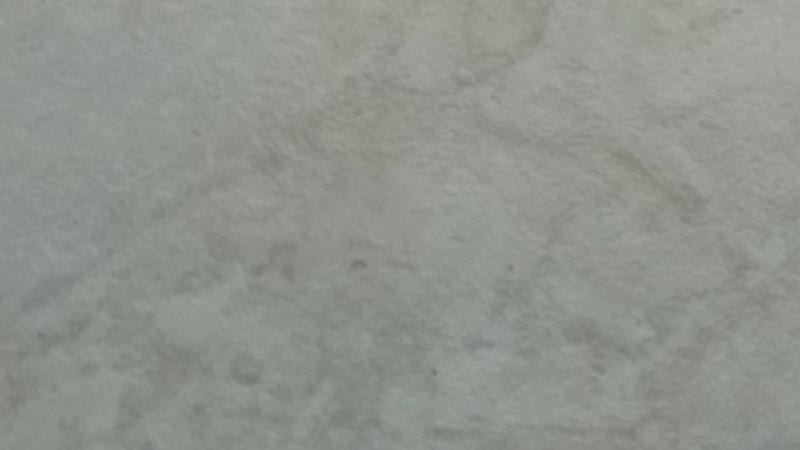 плюю в павука 55 секунд