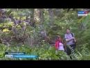 Новая экотропа на горе Стрижамент Автор Шамиль Байтоков