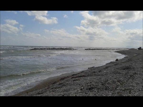 Yann Tiersen- Eusa- Pern