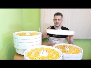 Сушка апельсинов в сушилке ВОЛТЕРА 1000 Люкс