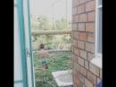 Сочинский кроха 😇